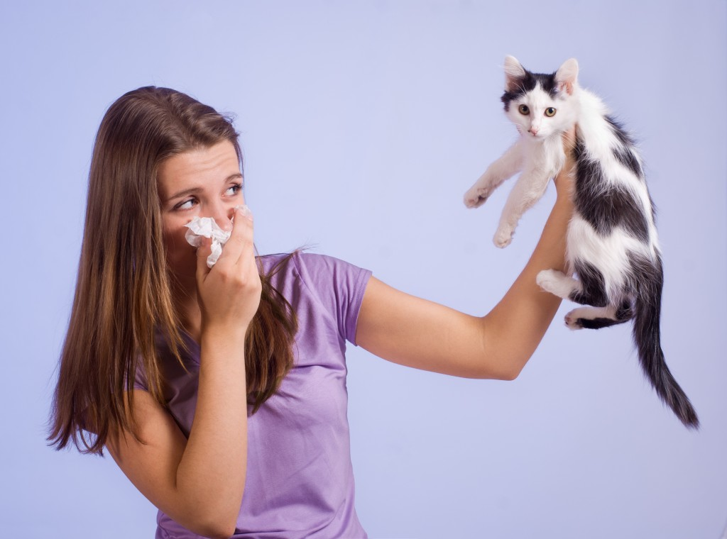 girl with allergies holding cat